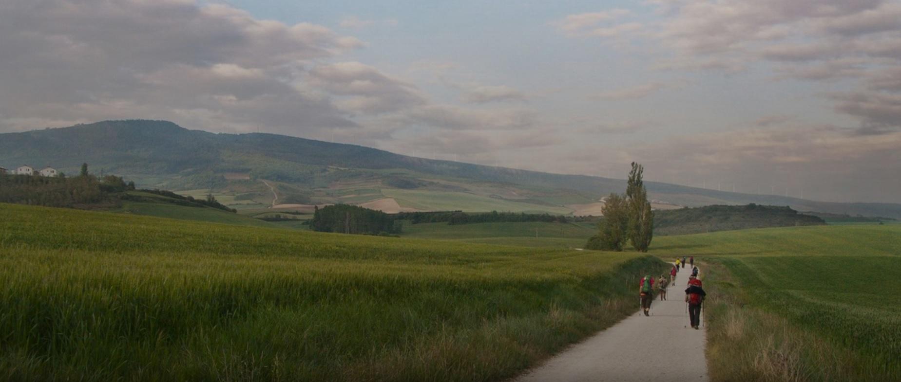 Camino de Santiago met de TOLAD…..